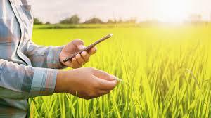 ตรวจสอบสิทธิ์รับเงินเยียวยาเกษตรกร 5,000บาท รอบที่2