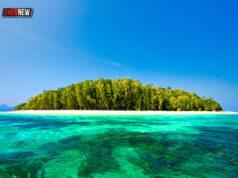เกาะไผ่